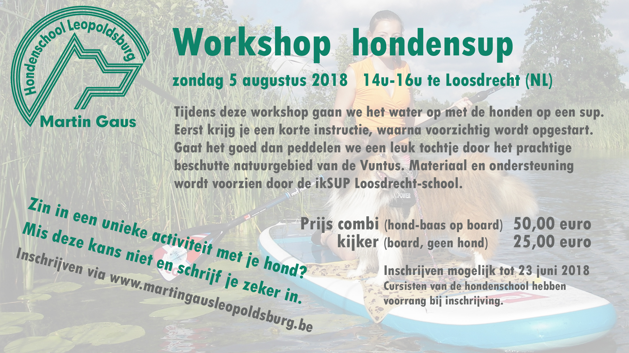 Workshop hondensup